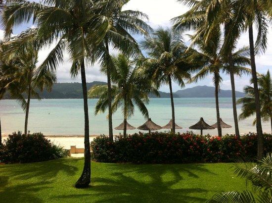 Beach Club: View