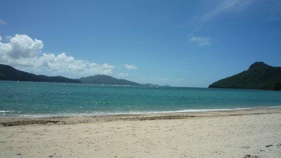 Beach Club: Beach & View