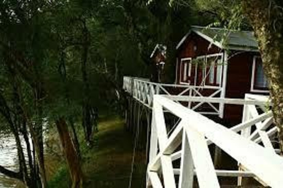 Paraiso Lodge: Vista Cabañas
