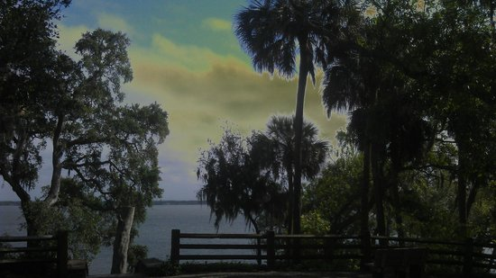 Philippe Park: Bench overlooking Tampa Bay by SCW