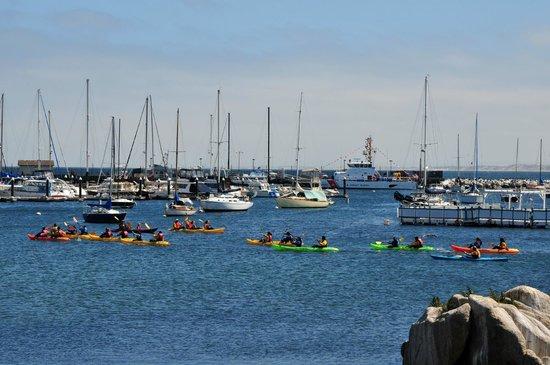 Portola Hotel & Spa at Monterey Bay : Coastal Trail
