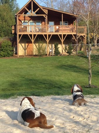 Barkwells, The Dog Lovers' Vacation Retreat: On the beach1