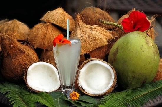 Madre Tierra Resort & Spa: Fresh coconuts anyone?
