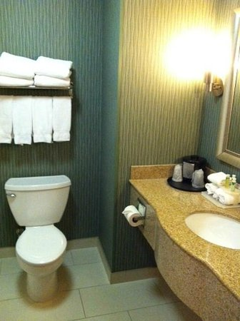 Holiday Inn Express Hotel & Suites Cordele North: Bath