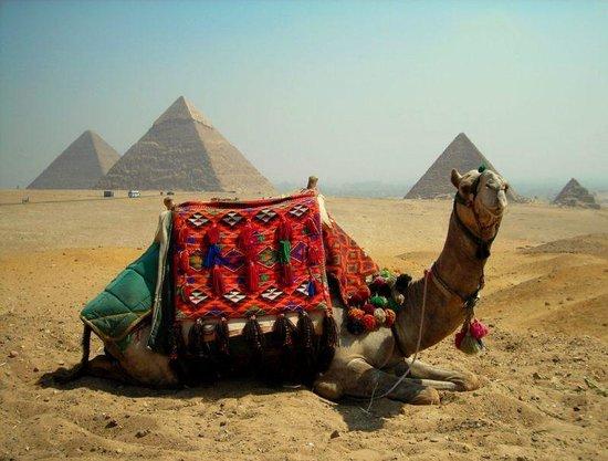 Egypt 2Day Tour -  Day Tours