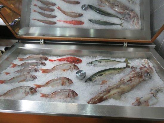 A Traineira Restaurante e Cervejaria: Make your selection of FRESH fish
