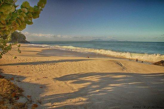 Agave Landings: Ffreyes Beach