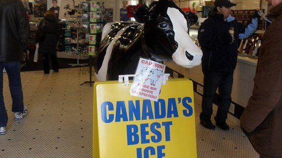 Cows Niagara On The Lake : Best Ice Cream by Far