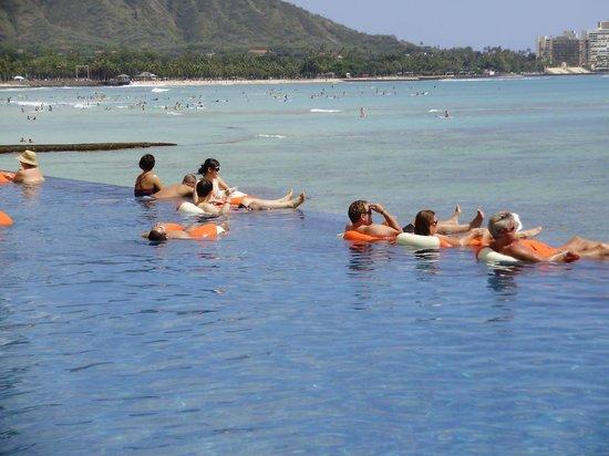Sheraton Waikiki: View from adult infinity pool