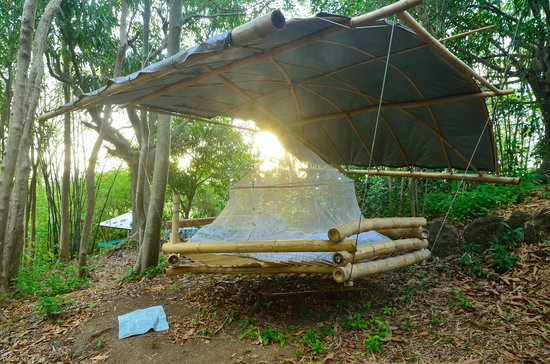"""Tropical Treehouse: """"spare bed"""""""