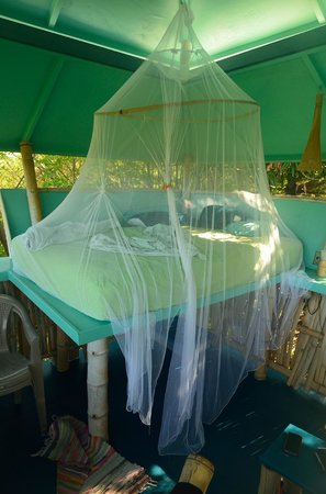 Tropical Treehouse: The bed at the Sunset Hooch