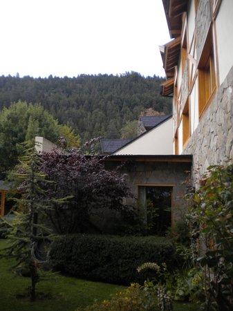 Monte Verde: Tranquilidad y Paz