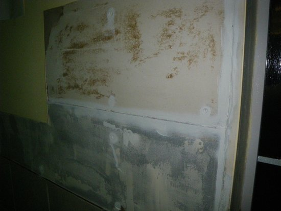 Quality Inn & Suites : Wall in pool room
