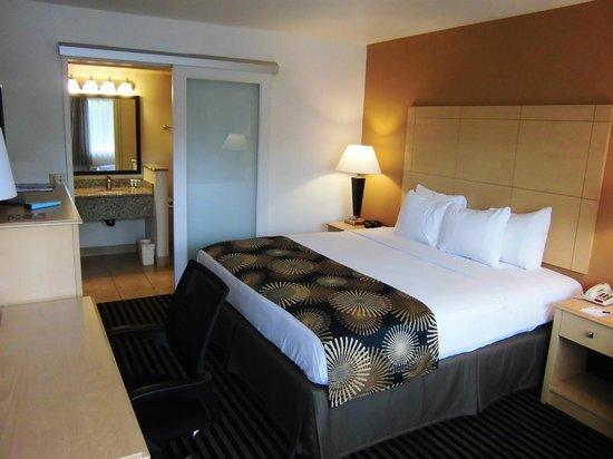 Best Western Palm Court Inn: Standard room