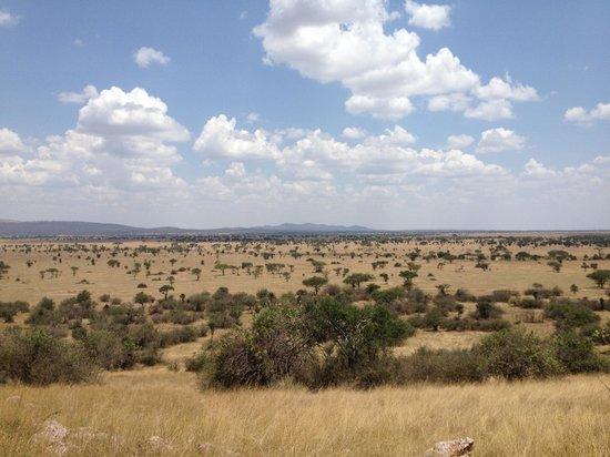 Manyara Ranch Conservancy: View