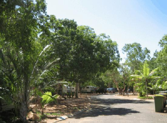 Cable Beach Caravan Park: Nice shady sites