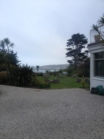 The Rosevine: Great to see and hear the sea!