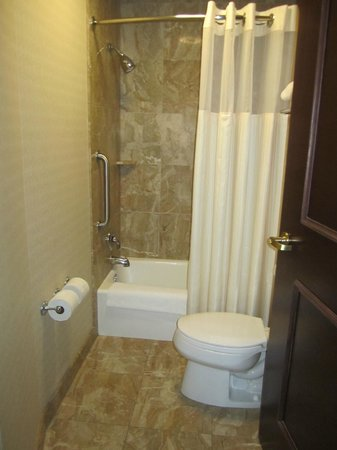 SpringHill Suites Tampa North/I-75 Tampa Palms : Salle de bain