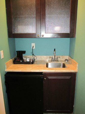SpringHill Suites Tampa North/I-75 Tampa Palms : Kitchenette