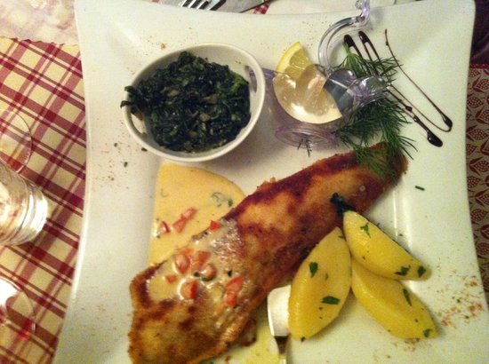 Ottoburg: Our vegetarian got this fish as main course and it was delicious!