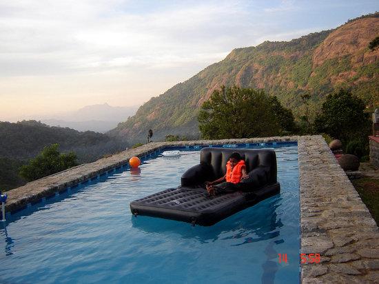 Wild Elephant Eco Friendly Resort : Pool View