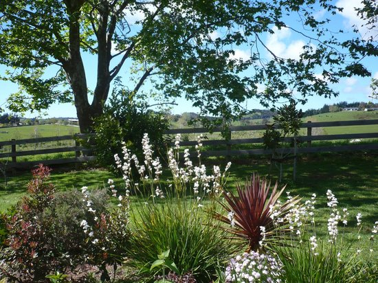 Warkworth Country Retreat : Garden view
