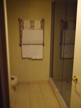 Pantages Hotel Toronto Centre: shower