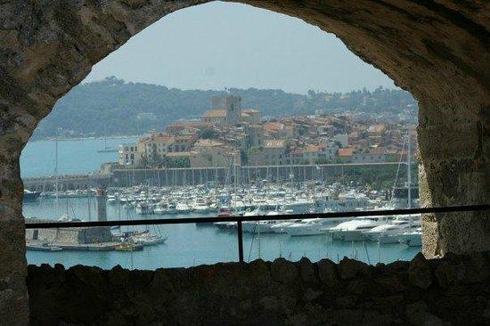 Camping Antipolis : il porto di antibes da fort carrè