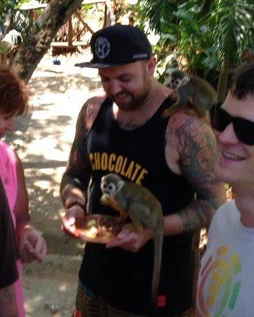 Monkey Jungle and Zip Line Adventures: Robert John Hunt enjoying the squirrel monkeys.