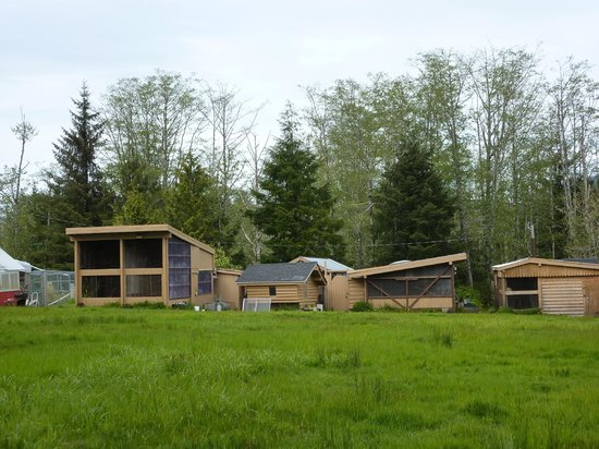 Prince Rupert Wildlife Rehab Shelter: Facilities