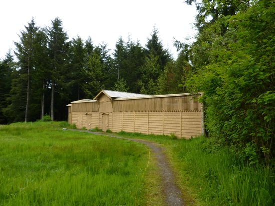 Prince Rupert Wildlife Rehab Shelter: Bald eagles Facility