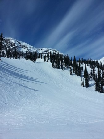 Snow Creek Lodge by Fernie Lodging Co: Ski That!