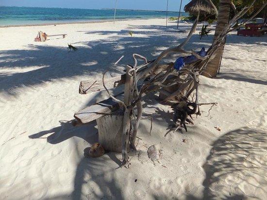 Xamach Dos their own beach