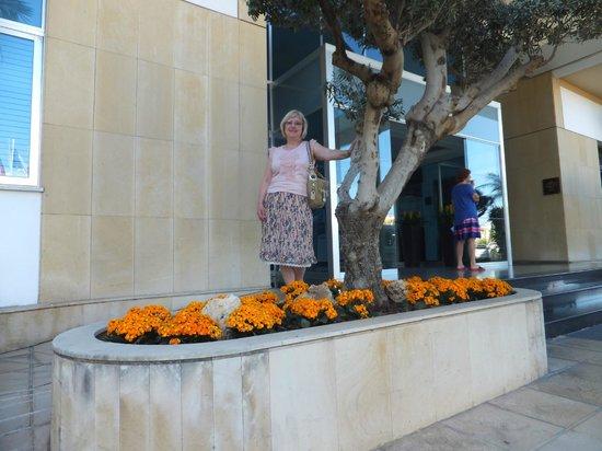 Mediterranean Beach Hotel: вход в отель