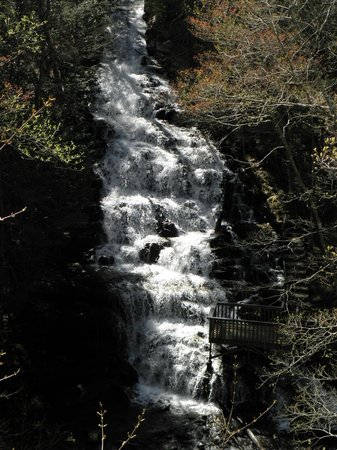 Vogel State Park: Falls at end of lake