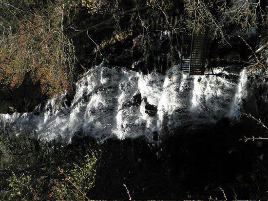 Vogel State Park: Falls at end of lake