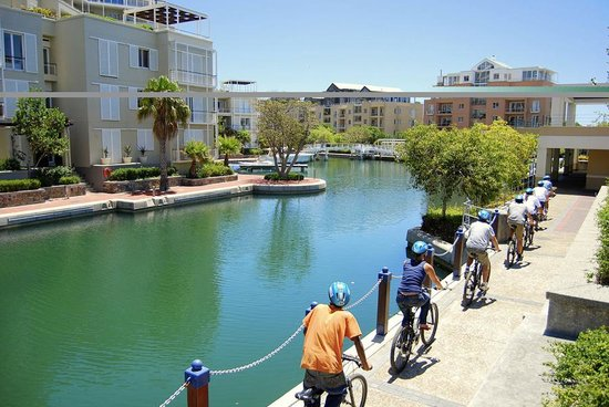 Discover Cape Town - Private Day Tours