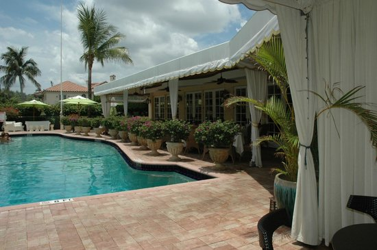 Colony Hotel: The pool is always clean and fresh to jump into.