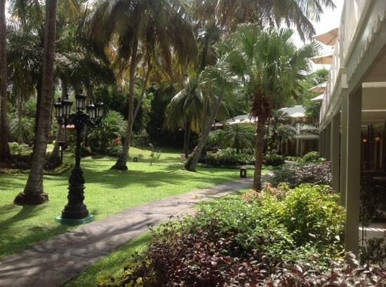 Sandals Halcyon Beach Resort: near our room