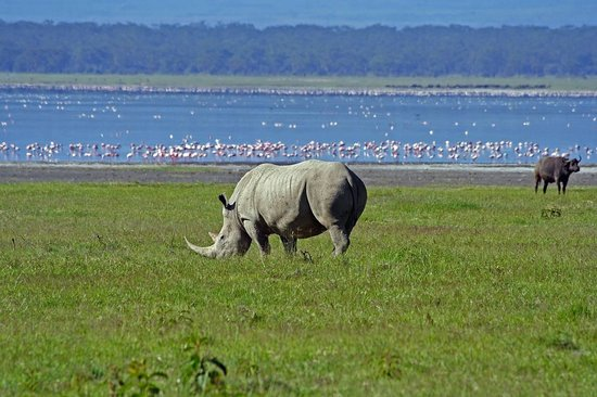 Sunfun Safaris Private Day Tours