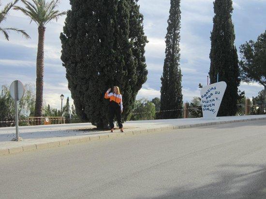 Balneario de Leana: Road to the hotel