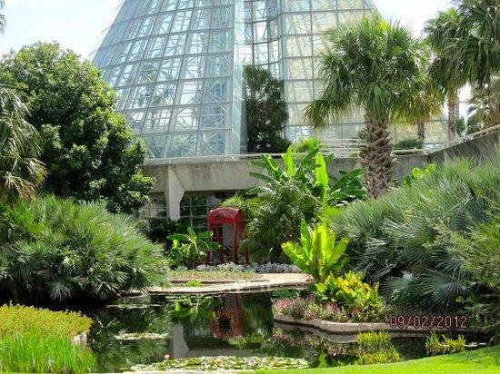 San Antonio Botanical Garden Picture Of San Antonio Botanical Garden San Antonio Tripadvisor