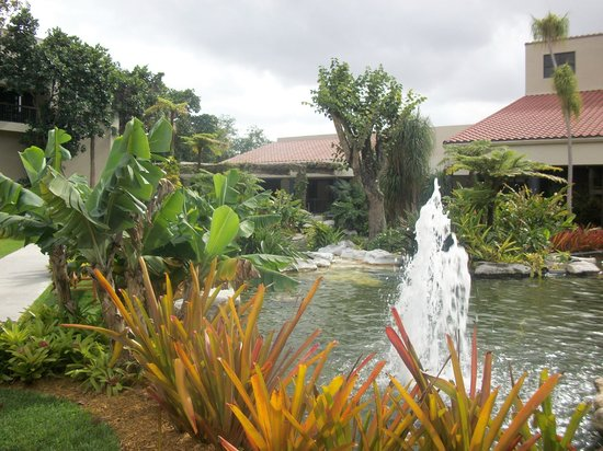 Shula's Hotel & Golf Club : Part of the garden