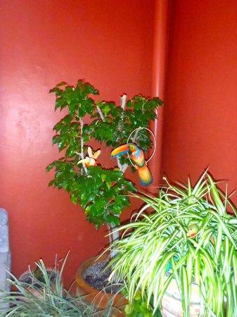 Macaws: Hey Mackaw
