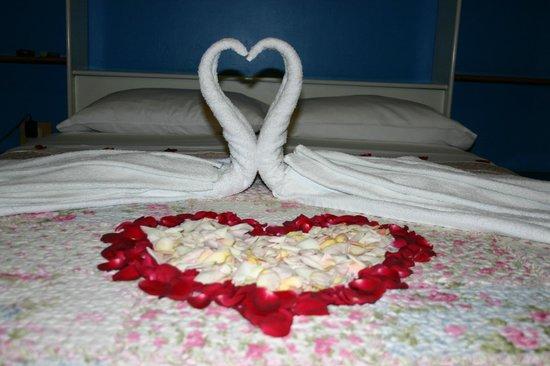 Bed & Breakfast de Kike: fresh beautiful roses!