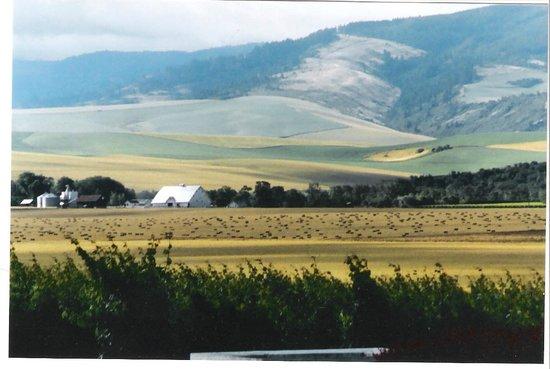 blue mountains picture of walla walla washington tripadvisor