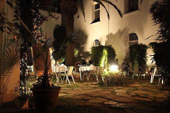 La Veranda : Le Jardin de nuit