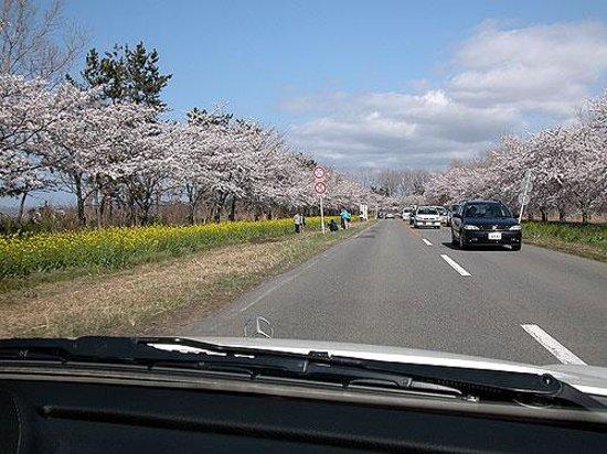 Ogata-mura صورة فوتوغرافية