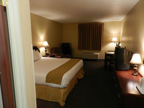 Luxury Inn & Suites: Single King Room