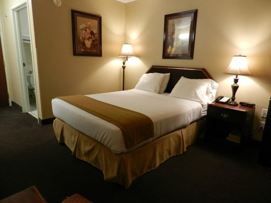 Luxury Inn & Suites: Single Queen Room